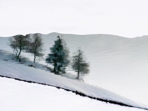 Trees reflected in water in snowy landscape