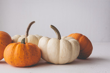 Pumpkins on  isolated white background