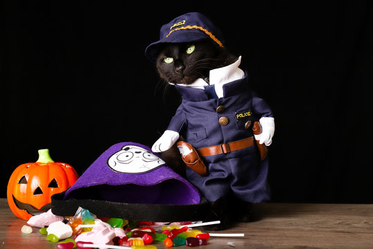 A black cat dressed as a police officer stands on top of a wooden table next to Halloween candy against a black background