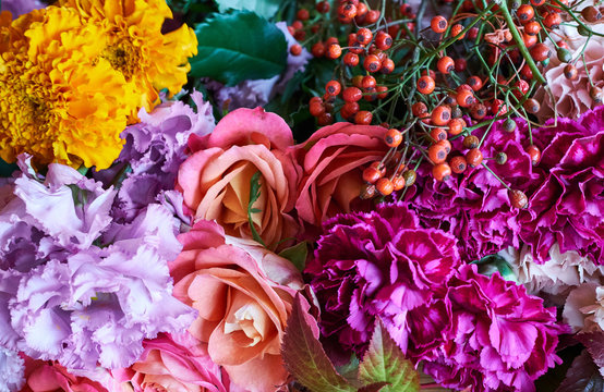Close up of colorful variety flowers