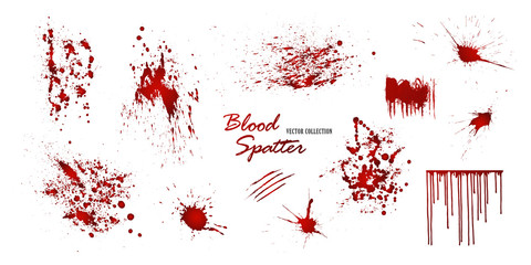 Tuinposter Vormen Set of various blood or paint splatters isolated on white background. Happy Halloween decoration,horrible blood drops, creepy splash, spot.Vector illustration
