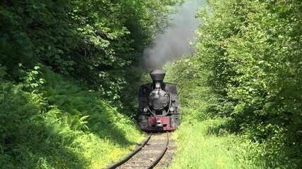 Old steam locomotive train on narrow railway crosses the woods