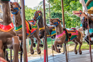 brown horses on a carousel at an amusement park