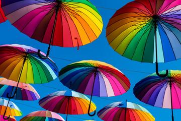 Many colorful umbrellas. Rainbow gay pride protection