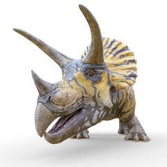 triceratops profile picture id on white background