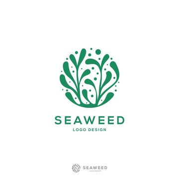 modern and minimalis Seaweed logo design inspiration