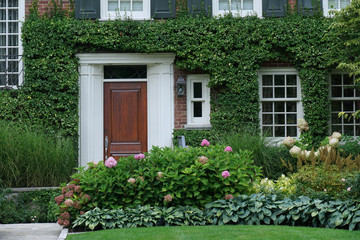 Front door of house surrounded by green vines and pink hydrangea flowers