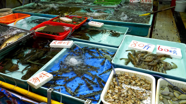 live prawns in a tank at chun yeung wet market