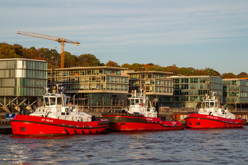 Tugboats anchoring at the river bank of the Elbe river in the harbour of Hamburg, Germany.