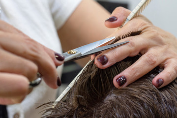 The hands of young barber making haircut to attractive man in barbershop. mens hair cutting scissors in a beauty salon