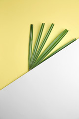 Wall Mural - Fresh tropical leaf and blank card on color background