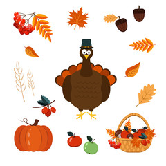 Set of elements for Thanksgiving-autumn leaves, basket with harvest, Turkey. Vector graphics