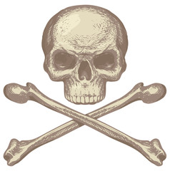 Sketch vector illustration, hand drawn human skull and crossbones isolated on white background. Jolly Roger. Pirate symbol or danger warning sign