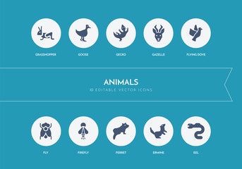10 animals concept blue icons Wall mural