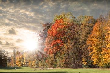 Herbstliche Landschaft mit bunten Blättern
