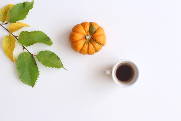 Styled stock photo with cup of coffee,orange pumpkin and twig isolated on white background. Flat lay, top view.
