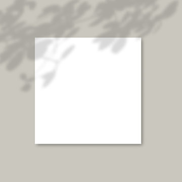 white paper on a background