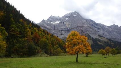 Der Herbst in Bayern:  Tegernsee mit Booten