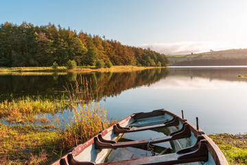 Rowing boat half filled with rain water on the shore of the lake on a misty autumn morning. Irish countryside scene. Blessington Lake in Wicklow, Ireland.