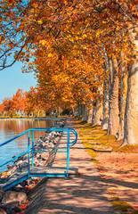 Nice autumnal scene at lake Balaton