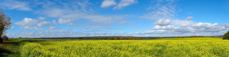Panorama Senffeld im Herbst Fotoväggar