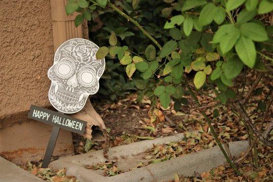 Sugar Skull Halloween Sign