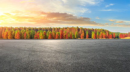 Empty race track ground and beautiful colorful forest landscape in autumn