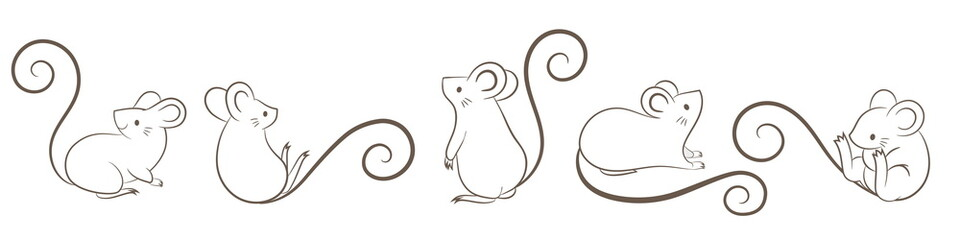 Set of hand drawn rats, mouse in different poses on white bacground. Vector illustration, cartoon doodley style.