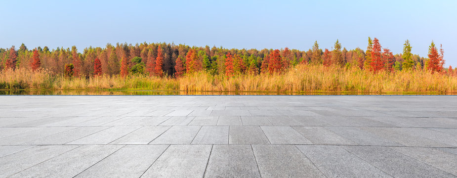 Empty square floor and beautiful colorful forest in autumn