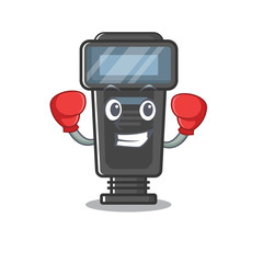 Boxing camera flash in the cartoon shape