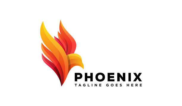 phoenix flying logo design