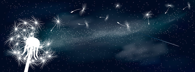Fluff dandelion in the universe. Space background. Fluffy dandelion in the background of the universe. Shining stars and nebula. Night starry sky