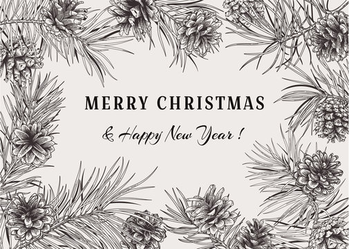 Christmas holiday frame with pine branches and cones.Vector illustration. Black and white background.