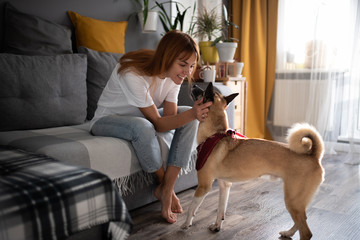 Cheerful lady petting dog at home