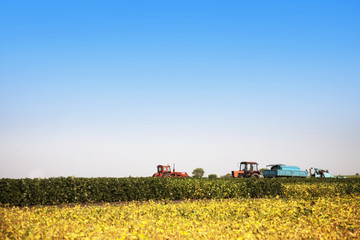 Wall Mural - Agricultural machines in a soy field in a bright sunny summer day.