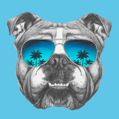 Portrait of English Bulldog with sunglasses. Hand-drawn illustration of dog. Vector isolated elements.