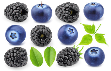 Colourful collection of forest berries - blueberry and blackberry isolated on a white background with clipping path.