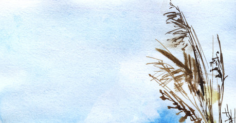Abstract sketchy watercolor background. Stalks and ears of dry grass against backdrop of gentle blue sky. Natural ocher colors. Eco-friendly background. Natural background. Hand drawn illustration