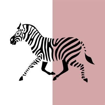 Transparent silhouette silhouette of running zebra. Vector illustration EPS 8