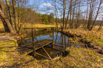 Small pond surrounded by forest, Dziemiany, Poland.