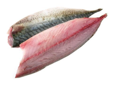 Mackerel Fillets - Raw Mackerel Fish on white Background