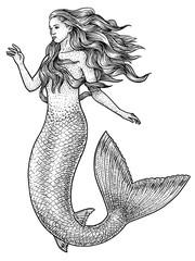 Mermaid illustration, drawing, engraving, ink, line art, vector