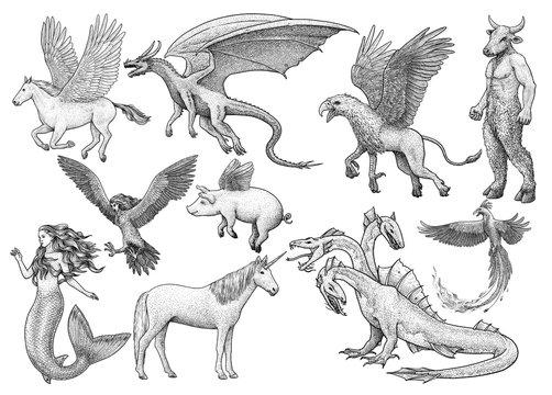 Mythological creatures, illustration, drawing, engraving, ink, line art, vector