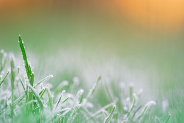 Wiese im Schnee bei Sonnenaufgang