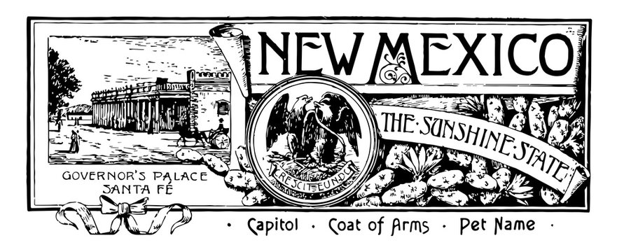 The state banner of New Mexico the sunshine state vintage illustration