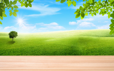 Wooden table and green leaves with beautiful landscape view of green grass natural meadow field and little hill with white clouds and blue sky in summer seasonal.
