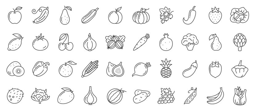 Fruit berry vegetable food line icon vector set
