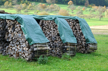 stacks of firewood drying on meadow covered with plastic tarps