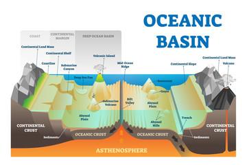 Ocean basin structure vector illustration. Labeled underwater level scheme.