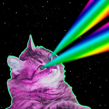 Big pink monster cat flies in deep space and shoots rainbow lasers from eyes. Art collage concept of 90s or 80s